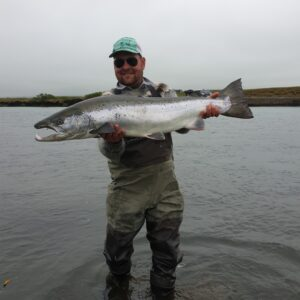 Beautiful atlantic salmon caught fly fishing in Iceland