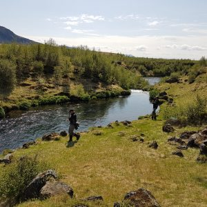 Fly fishing in the beautiful nature of Iceland