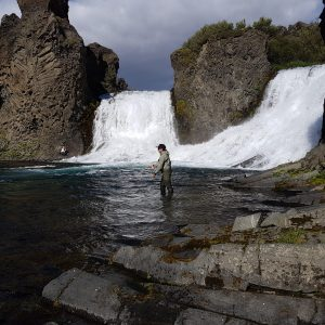 Fly fishing in the waterfalls of Iceland