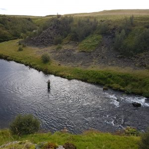 Fly fishing in the rivers of Iceland