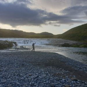Fly fishing in Icelandic midnight summer sun
