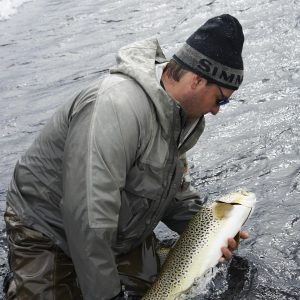 Catch and release a large Brow trout in Lake Thingvellir